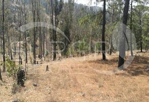 Foto de terreno habitacional en venta en  , tenencia de morelos, morelia, michoacán de ocampo, 6932616 No. 01