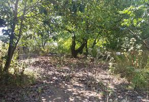 Foto de terreno habitacional en venta en tenencia de quiterio s/n , san juan de viña, tacámbaro, michoacán de ocampo, 5371881 No. 01