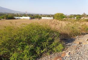 Foto de terreno comercial en venta en tenencia morelos , tenencia de morelos, morelia, michoacán de ocampo, 0 No. 01