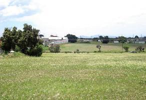 Foto de terreno habitacional en venta en teopan , tepetlaoxtoc de hidalgo, tepetlaoxtoc, méxico, 0 No. 01