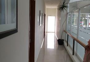 Foto de oficina en renta en teopanzolco 401, reforma, cuernavaca, morelos, 9061832 No. 01