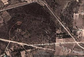 Foto de terreno habitacional en venta en  , tepetlaoxtoc de hidalgo, tepetlaoxtoc, méxico, 11810303 No. 01