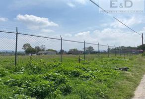 Foto de terreno habitacional en venta en  , tepetlaoxtoc de hidalgo, tepetlaoxtoc, méxico, 0 No. 01