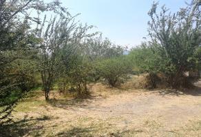 Foto de terreno habitacional en venta en tepeyac , los cedros, ixtlahuacán de los membrillos, jalisco, 0 No. 01