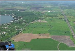 Foto de terreno comercial en venta en  , tequesquitengo, jojutla, morelos, 21100962 No. 01