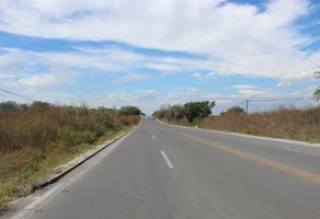 Foto de terreno comercial en venta en  , tequesquitengo, jojutla, morelos, 0 No. 01