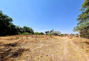 Foto de terreno habitacional en venta en  , tercera grande, san luis potosí, san luis potosí, 0 No. 01