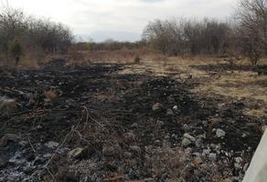 Foto de terreno habitacional en venta en terracería granjas del sur , mirador de la cumbre ii, colima, colima, 0 No. 01