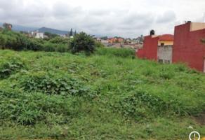 Foto de terreno industrial en venta en terranova 117, cuernavaca centro, cuernavaca, morelos, 0 No. 01