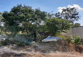 Foto de terreno comercial en venta en terreno 250 m2 dzitya , dzitya, mérida, yucatán, 18850233 No. 01
