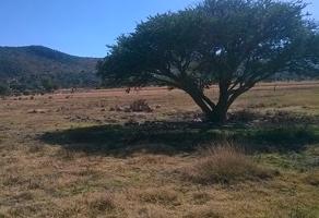 Foto de terreno habitacional en venta en terreno cañajo 1 frente a carretera san miguel allende a querétaro , cañajo, san miguel de allende, guanajuato, 14186635 No. 01