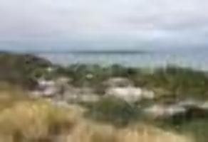 Foto de terreno habitacional en venta en terreno palmira de las a , lomas de palmira, la paz, baja california sur, 0 No. 01