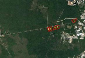 Foto de terreno habitacional en venta en terrenos desde $200xm2 en tixcacal opichen , tixcacal opichen, mérida, yucatán, 0 No. 01