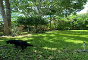 Foto de rancho en venta en  , tesip, mérida, yucatán, 18594196 No. 01