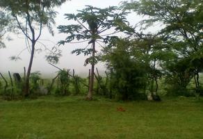 Foto de terreno habitacional en venta en tetecala , el charco, tetecala, morelos, 18427871 No. 01