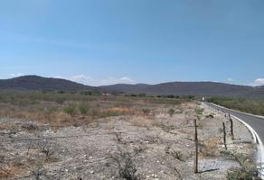 Foto de terreno habitacional en venta en  , tetecala, tetecala, morelos, 18596476 No. 01