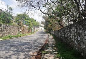 Foto de terreno habitacional en venta en  , tetela del monte, cuernavaca, morelos, 8356109 No. 01