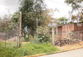 Foto de terreno comercial en venta en  , tetelcingo, cuautla, morelos, 5809471 No. 01
