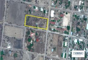 Foto de terreno habitacional en venta en  , tetelilla, jonacatepec, morelos, 7060687 No. 01
