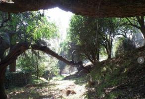 Foto de terreno habitacional en venta en  , tetelpan, álvaro obregón, df / cdmx, 14288887 No. 01