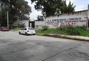 Foto de terreno habitacional en venta en texas 0, san mateo huexotla, texcoco, méxico, 0 No. 01