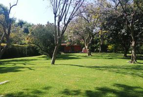 Foto de terreno habitacional en venta en tezontepec de los doctores 62, las fincas, jiutepec, morelos, 12787632 No. 01