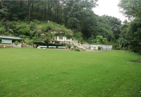 Foto de terreno comercial en venta en  , tezoyuca, emiliano zapata, morelos, 9400980 No. 01