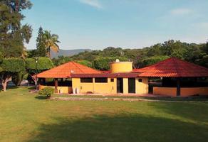 Foto de terreno habitacional en venta en ticuman , ticuman, tlaltizapán de zapata, morelos, 19405261 No. 01