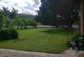 Foto de terreno habitacional en venta en  , ticuman, tlaltizapán de zapata, morelos, 18572363 No. 01