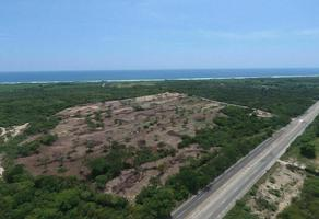 Foto de terreno habitacional en venta en tierra blanca , santa maria colotepec, santa maría colotepec, oaxaca, 0 No. 01