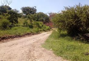 Foto de terreno habitacional en venta en tierra larga , valle de tlajomulco, tlajomulco de zúñiga, jalisco, 14185423 No. 01