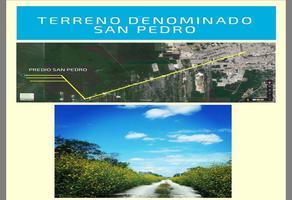 Foto de terreno habitacional en venta en  , tierra maya, benito juárez, quintana roo, 0 No. 01