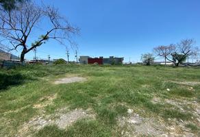 Foto de terreno habitacional en renta en  , tierra propia sector 1, guadalupe, nuevo león, 0 No. 01