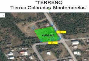 Foto de terreno habitacional en renta en  , tierras coloradas, montemorelos, nuevo león, 11714038 No. 01