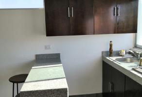 Foto de departamento en renta en tikal , privada san joaquín, carmen, campeche, 16984297 No. 01