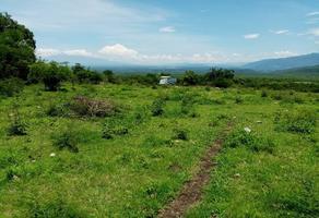 Foto de terreno habitacional en venta en tinajas colima , tinajas, colima, colima, 0 No. 01