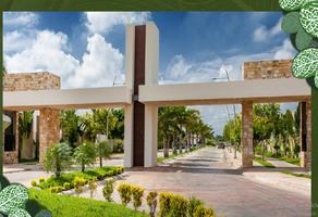 Foto de casa en venta en  , tixcacal opichen, mérida, yucatán, 17891342 No. 01