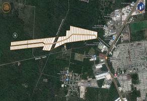 Foto de terreno industrial en venta en  , tixcacal opichen, mérida, yucatán, 0 No. 01