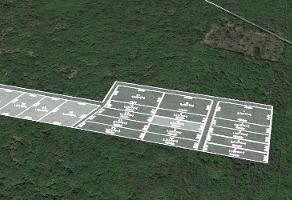 Foto de terreno habitacional en venta en  , tixkuncheil, baca, yucatán, 11781089 No. 01