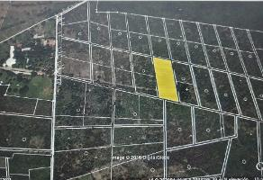Foto de terreno habitacional en venta en  , tixkuncheil, baca, yucatán, 14050834 No. 01