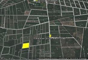 Foto de terreno habitacional en venta en  , tixkuncheil, baca, yucatán, 14224257 No. 01