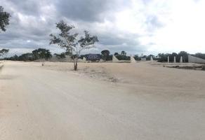 Foto de terreno habitacional en venta en  , tixkuncheil, baca, yucatán, 14258072 No. 01