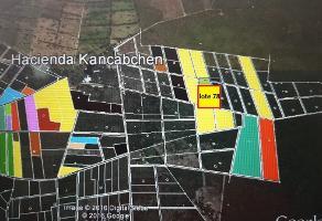 Foto de terreno habitacional en venta en  , tixkuncheil, baca, yucatán, 14258076 No. 01