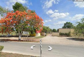 Foto de terreno habitacional en venta en  , tizimin centro, tizimín, yucatán, 21087612 No. 01