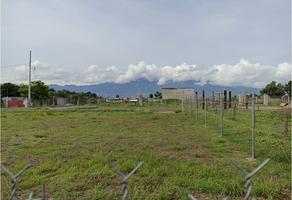 Foto de terreno habitacional en venta en  , tlacolula de matamoros centro, tlacolula de matamoros, oaxaca, 0 No. 01