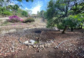 Foto de terreno habitacional en venta en  , tlacotepec, zacualpan, morelos, 0 No. 01