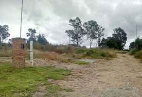 Foto de terreno habitacional en venta en tlahuicole , santa úrsula zimatepec, yauhquemehcan, tlaxcala, 0 No. 01