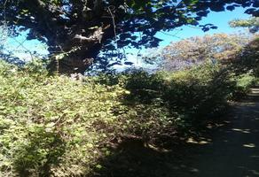 Foto de terreno habitacional en venta en  , tlalixtac de cabrera, tlalixtac de cabrera, oaxaca, 14289339 No. 01
