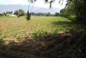 Foto de terreno habitacional en venta en  , tlalixtac, santa maría tlalixtac, oaxaca, 10782466 No. 01