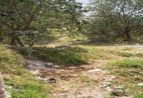Foto de terreno habitacional en venta en tlalpizalco , san miguel xicalco, tlalpan, df / cdmx, 16359208 No. 01